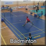 badmintonpeque
